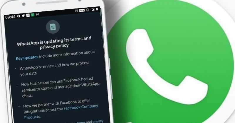 Whatsapp privacy policy & Terms update